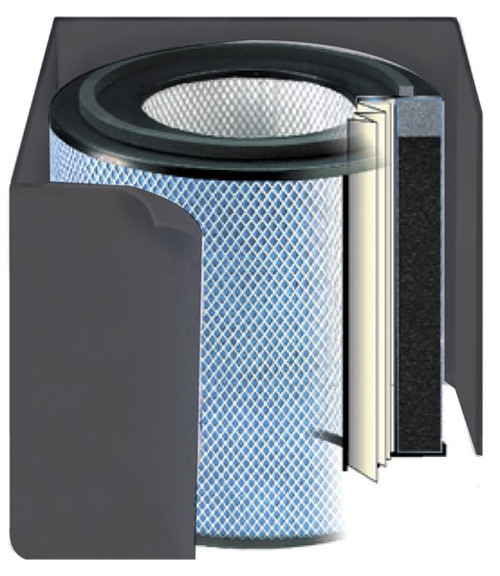 Austin Air Bedroom Machine Replacement Filter - Black