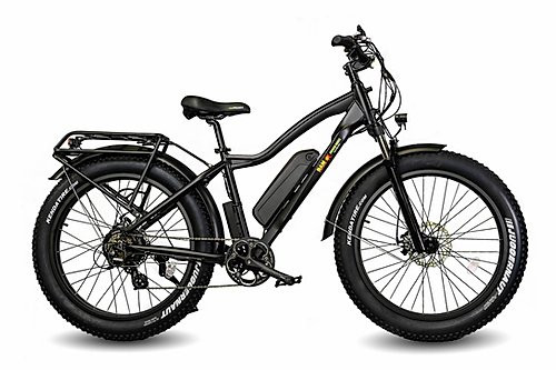 BAM EW-Supreme Electric Bike Black
