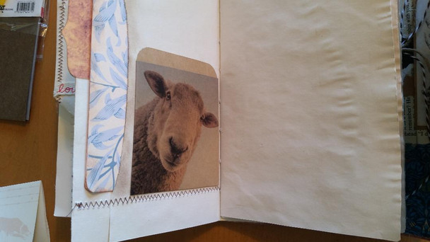 Deep pocket with large cards inside, library sheep pocket with library card, page has a tab also.