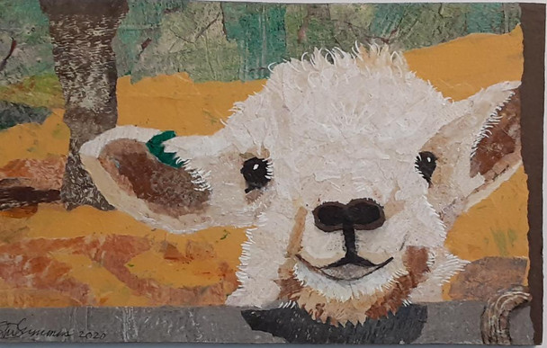 The White Little Lamb