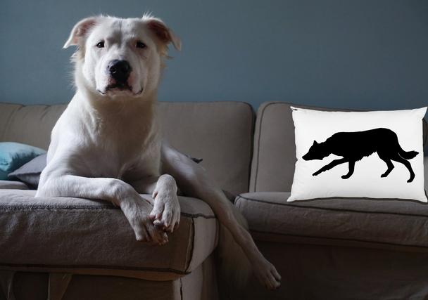 Herding Dog Pillows