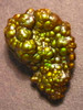 Mangrove - Arizona Fire Agate - SOLD