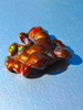 Chiroptera - Arizona Fire Agate - SOLD