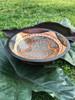 Zimbabwe Snake Bowl #3
