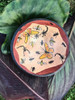 Zimbabwe Insect Bowl #4
