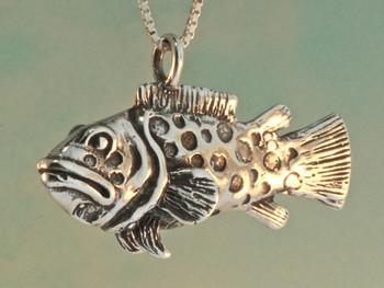 Potato Cod - Grouper - Bass