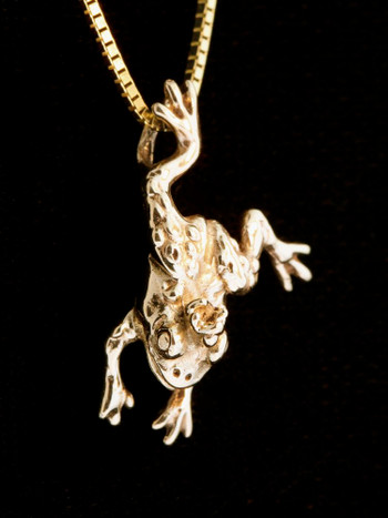 Enchanted Frog Charm - 14K Gold