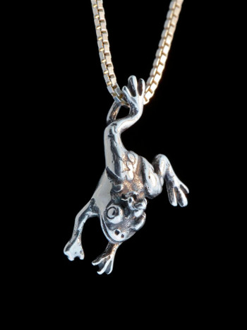 Enchanted Frog Charm - Silver