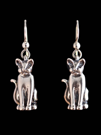 Magic Cat Earrings - Silver