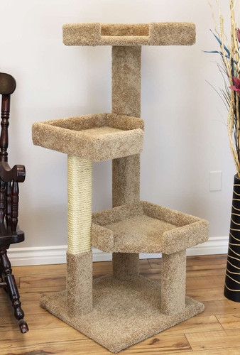 Product Care And Assembly New Cat Condos