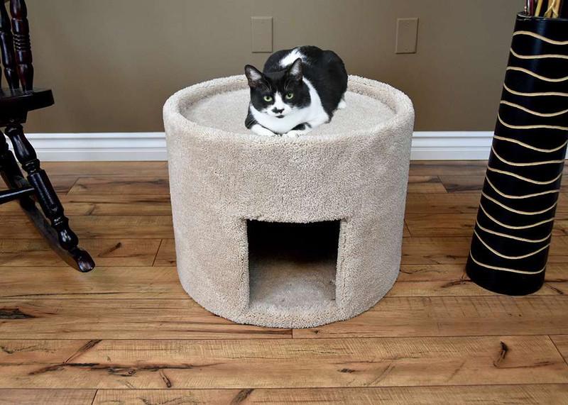 Big Cat Houses New Cat Condos