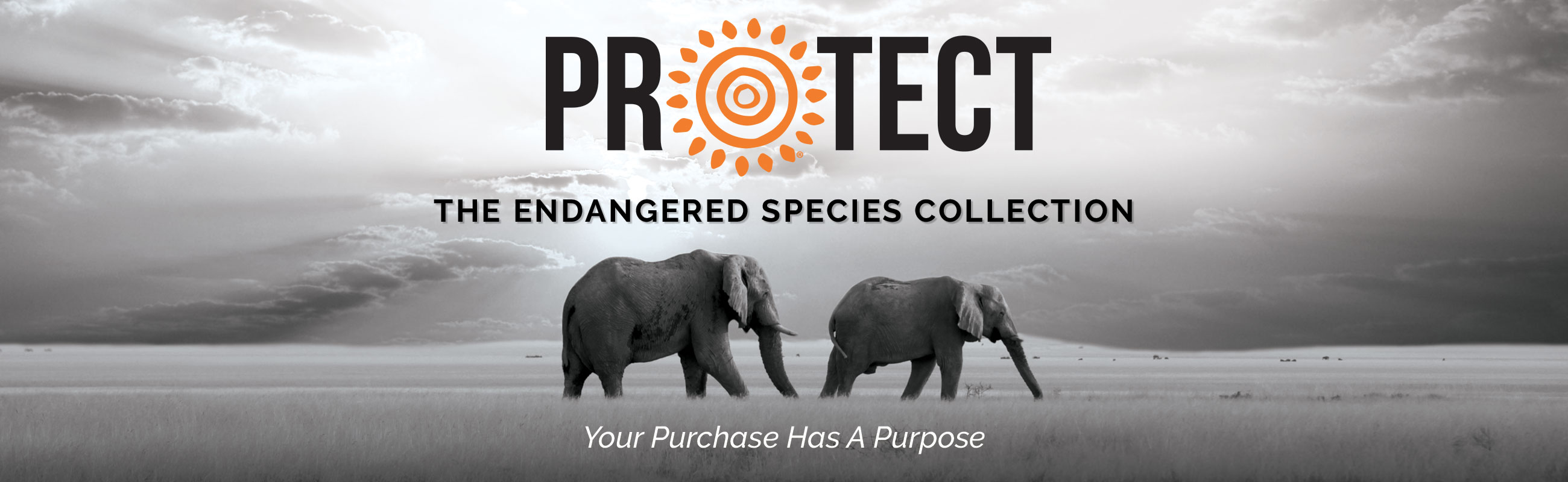 Protect Collection