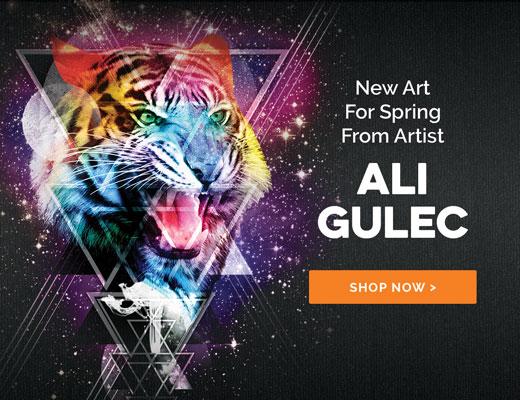 Ali Gulec Spring 2019 Collection