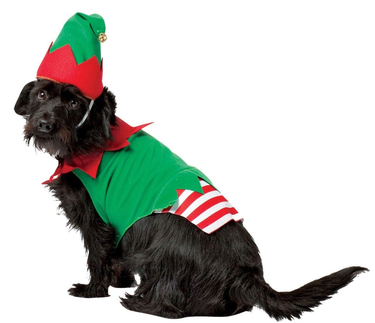 da2c5f6bc93b7 Rasta Imposta Santa s Helper Hat One Piece Elf Dog Pets Christmas Costume  GC5028 - Fearless Apparel
