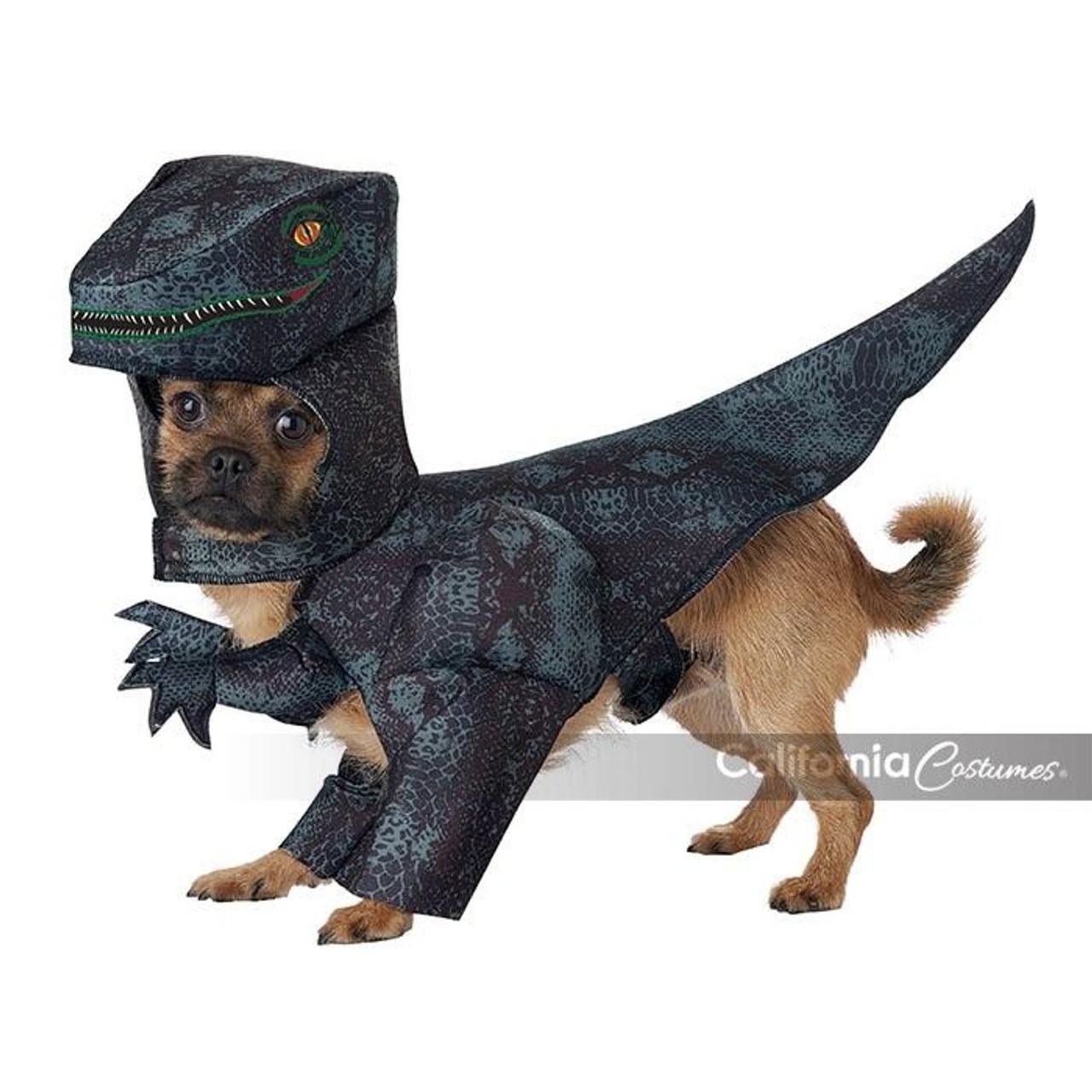 California Costumes Pupasaurus Rex T Rex Dog Puppy Halloween Costume Pet20169