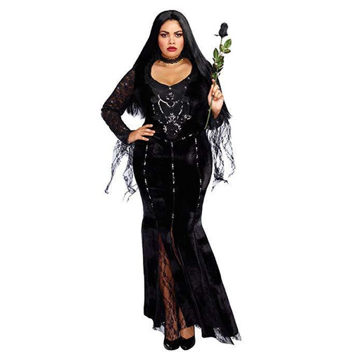Dreamgirl The Sorceress Witch Plus Size Womens Adult Halloween Costume 11149 Fearless Apparel