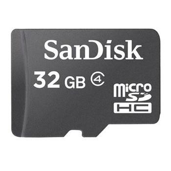 32GB MicroSDHC Card w adapter