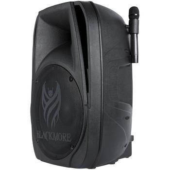 Portable Amplified 2-Way Loudspeaker with Microphones