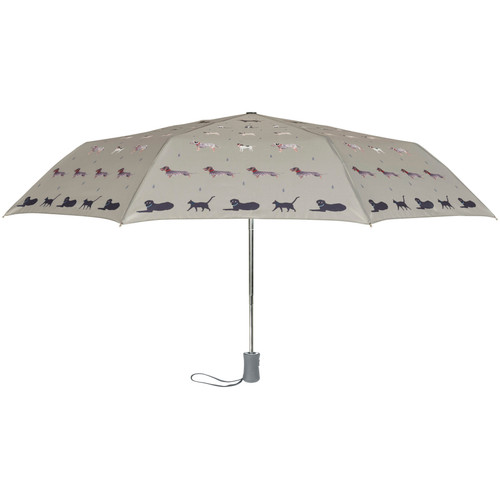 Umbrella Raining Cats & Dogs
