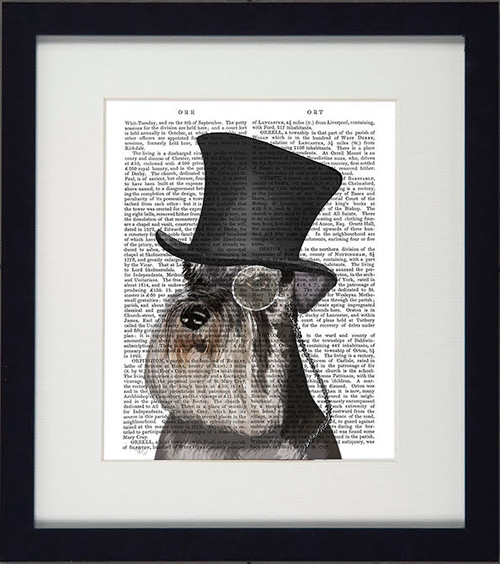 Formal Dogs Schnauzer Picture