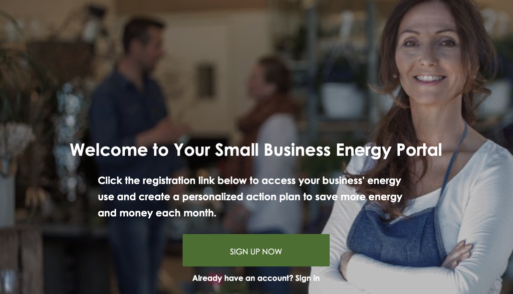 What is the Small Business Energy Portal?