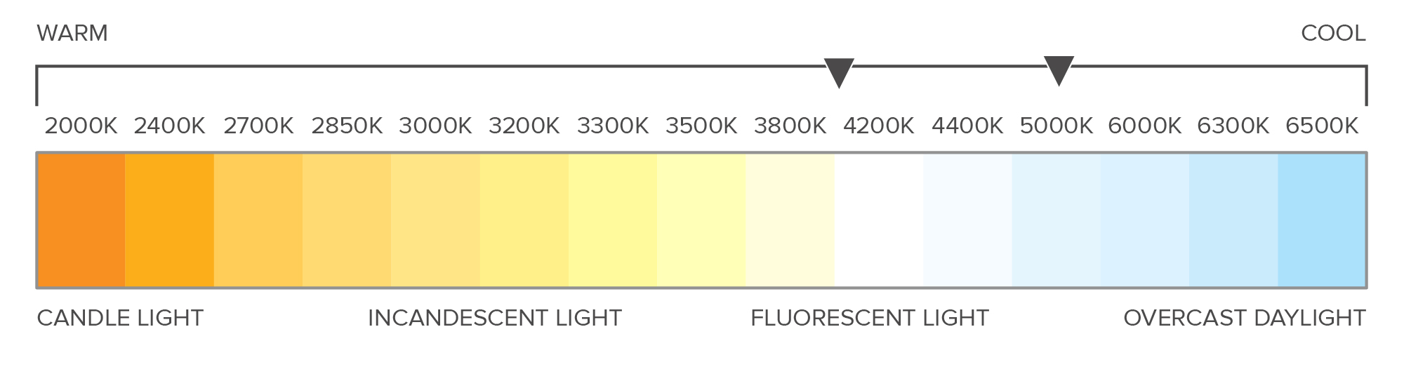 infographic-t8-color-temp.jpg