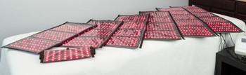 Slim Sculpt - 7 Pad Premium  + WBV V2 + Premier Footbath