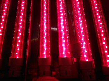 Summer Body Red Light LED Tube Bed Deluxe