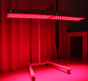 Summer Body Red Light Panel XXL Full Body with Stand