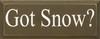 Got Snow?  Seasonal Wood Sign  Sawdust City Wood Signs