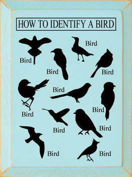 How to Identify a Bird (images of birds) | Funny Wood Signs | Sawdust City Wood Signs