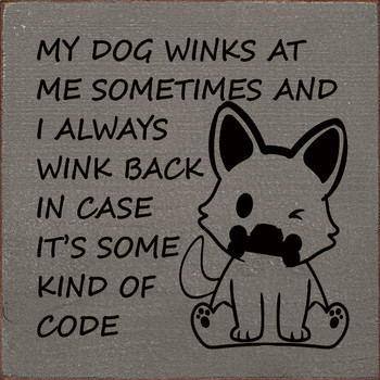 My dog winks at me sometimes and I always wink back in case..
