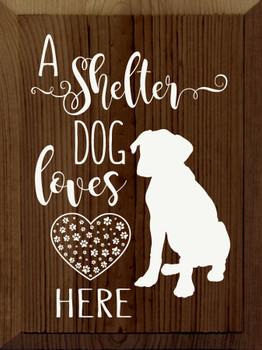 A shelter dog loves here