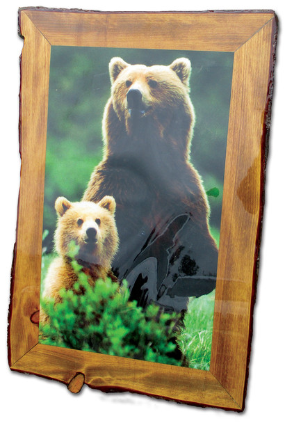 Large Rustic Bear Picture - Overstock