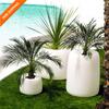 Organic Redonda Alta Planter