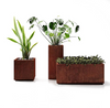 This photo features Corten Steel Cube Planter (left), Corten Steel Pedestal Planter (middle), Corten Steel Long Box Planter (right)