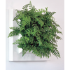 BioMontage Live Wall Planter