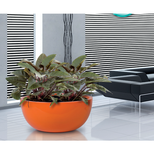 Swell Modern Tabletop Planters Urbilis Interior Design Ideas Apansoteloinfo