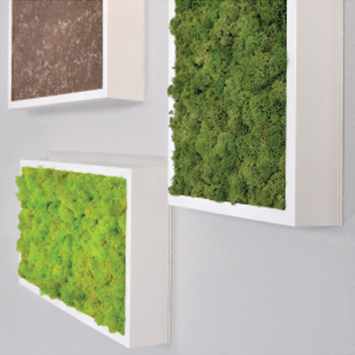 BioMontage Wall Planter