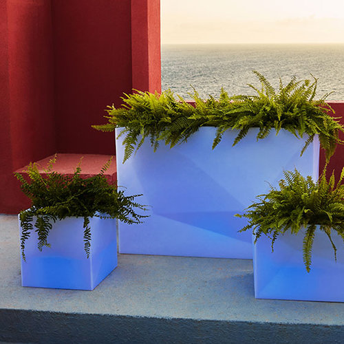 Faz Illuminated Cubo Planter