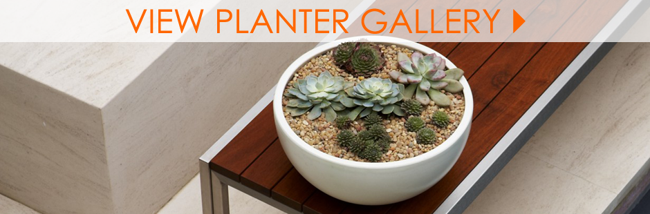 Modern Planter Inspiration Gallery