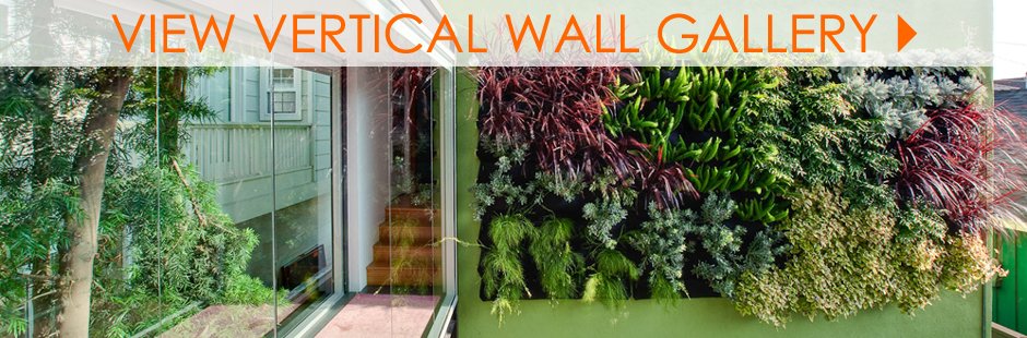 Modern Vertical Wall Planter Gallery