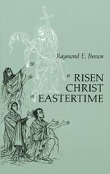 A Risen Christ in Eastertime: Essays on the Gospel Narratives of the Resurrection