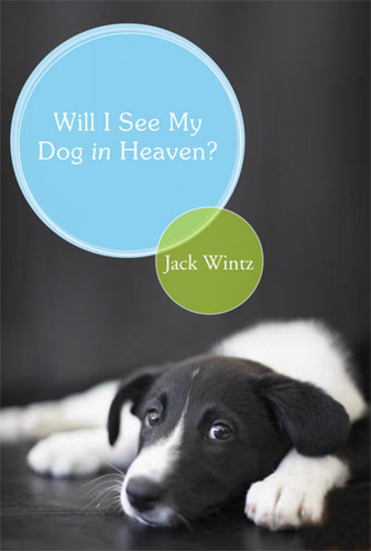 Will I See My Dog In Heaven: God's Saving Love for the Whole Family of Creation