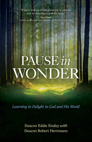 Pause in Wonder: Learning to Delight in God and His World