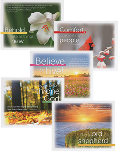 Set of 5 Grief Ministry Cards (Cards): For throughout the First Year of Loss