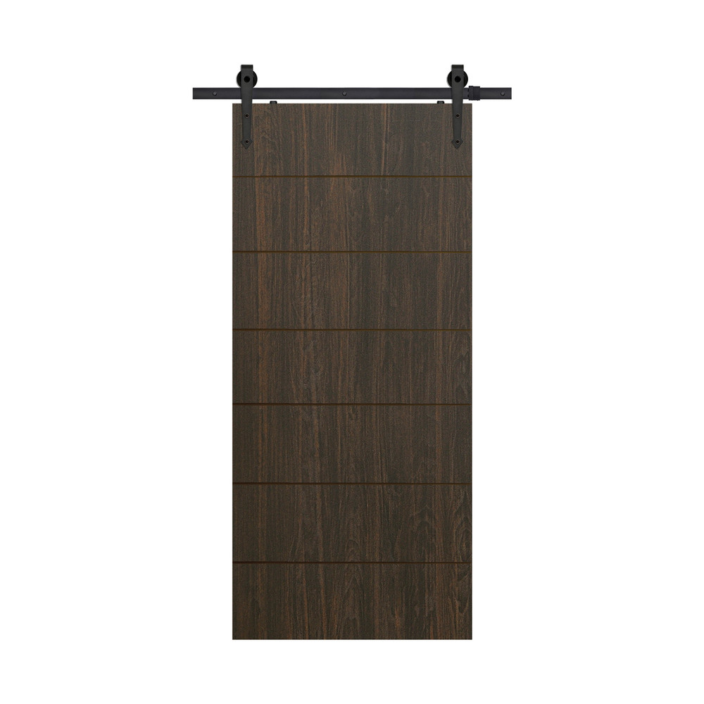 Westwood Modern Birch Barn Door