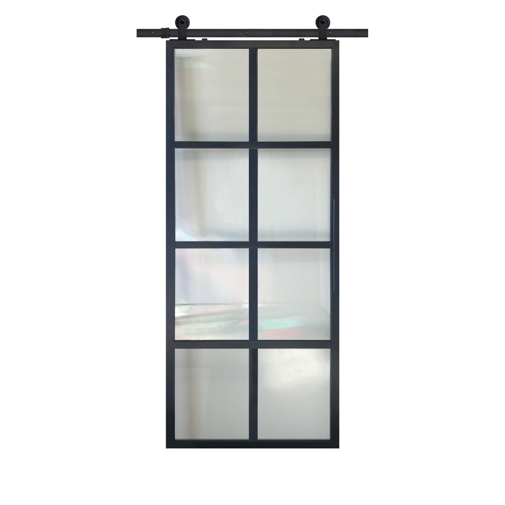 Modern French 8 Lite Barn door with clear glass