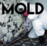 Mold Remediation/Disaster Clean Up