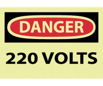 Danger 220 Volts 3X5 Ps Vinylglow 5/Pk